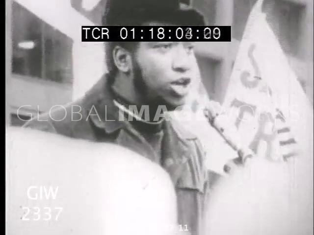 bobby Stock Footage - Footage net